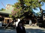 ●早朝の白山神社へお参り●.jpg