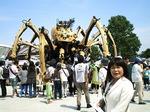 ●巨大クモはお休み中●.jpg