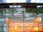 図3 展望フロア、恐怖のガラス床.jpg