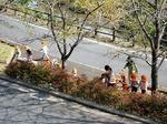 ●合同庁舎の眼下では園児がお散歩●.jpg