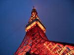 図5 夜の東京タワー.jpg
