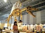 ●復元されたスピノサウルス●.jpg
