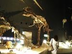 ●おお、恐竜さんかっこいい!●.jpg