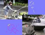 ●かえるの噴水と格闘●.jpg