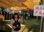 中丸熊野神社の境内(東京都板橋区).jpg