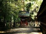 ●奥には、摂社・抜鉾若御子神社がある●.jpg