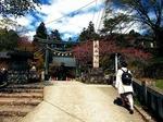●神社前の坂の参道が最大の難所●.jpg