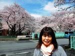 ●晴天に桜の花が映える●JPG.jpg