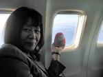 ●島根を目指して、JALで移動中(笑)●.jpg