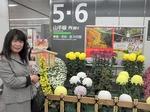 ●東京・池袋駅でも菊まつりが案内されていた●.jpg