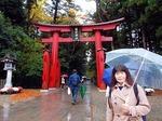 ●越後国一の宮・弥彦神社の菊まつりを観て帰ります!●.jpg