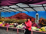 ●菊で富士山を表現●.jpg