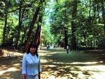 ●参拝客でにぎわう鹿島の森●.jpg