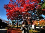 ●白山公園の紅葉●.jpg