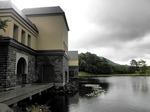 ●美術館の前の池には蓮の花が咲いていた●.jpg